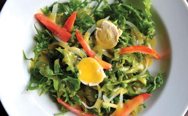 use of salad
